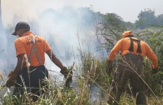 Defensa Civil ayuda a sofocar incendios forestales en Santiago